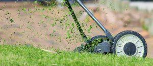 centerton ar lawn care service