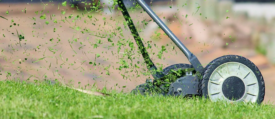A Few Fun Lawn Care Facts – Lawn Mowing Service Centerton Ar